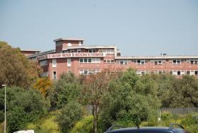Medicina Veterinaria Sassari